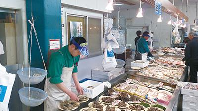 日本海鮮魚センターあらい店様 紙製サンバイザー